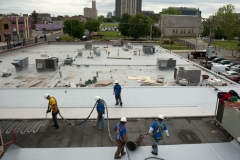 Fleeceback Roof, Project, Pappy's Smokehouses, St. Louis, MO