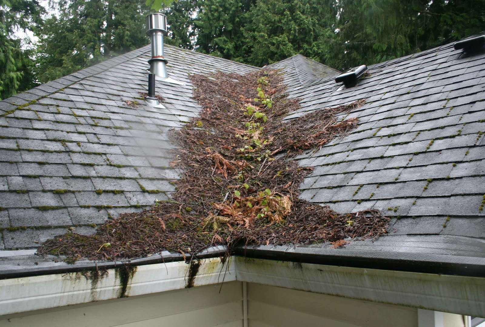 Simple Steps To Extend The Life Of Your Roof And Avoid